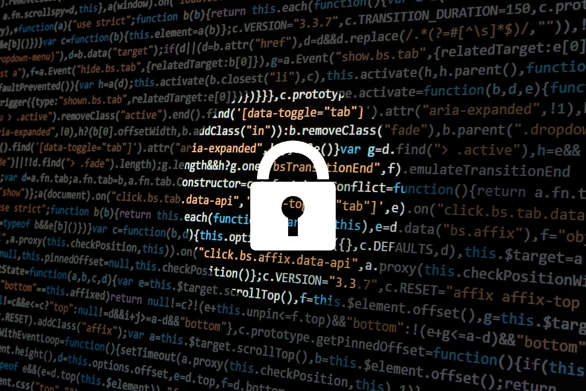 Privacy Immagine